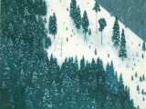 春雪(木版画)