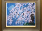 円山公園枝垂桜(技法:リト+シルク)