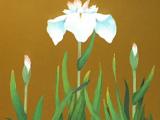 名古屋剛志「涼華」(日本画6号)